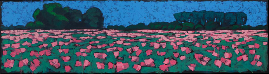 Adri Geelhoed: Veld met papavers/Field with Poppies